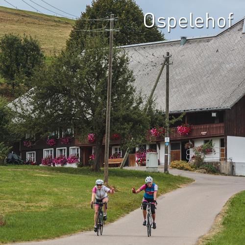 ospelehof2016